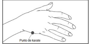 punto karate