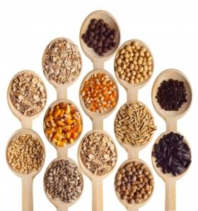 semillas en cuchara de madera